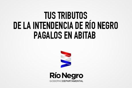 PAGO DE TRIBUTOS